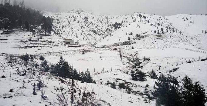 Giresun Kar Yağışı